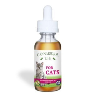 CBD For Cats | CBD Infusionz