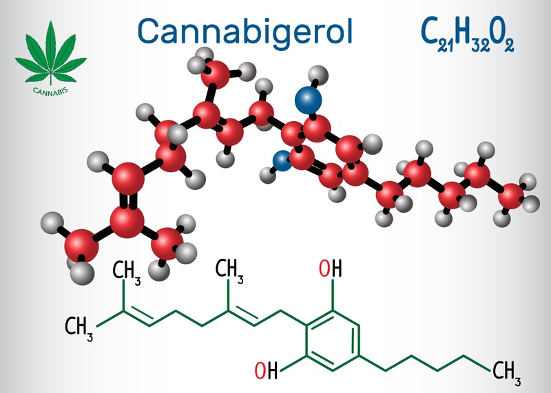 CBG, Cannabigerol, Compare CBD, CBD products, Cannabis
