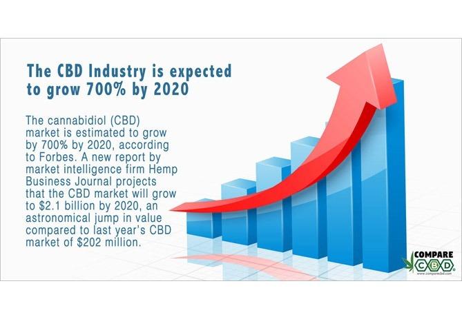 Wholesale CBD {Canada} , cbd business, forbes cbd statistic, compare cbd, bulk cbd