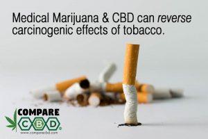 smoking, marijuana, cbd, reverse effects of smoking, compare cbd, buy cbd