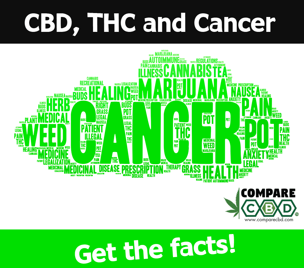 thc and cbd, cbd, cure cancer with cannabis, compare cbd