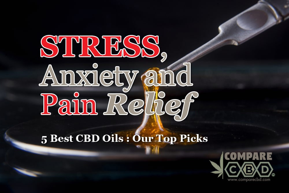 Stress, Anxiety, Pain Relief, Best CBD Oils