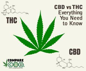 Tetrahydrocannabinol, THC, CBD, Differences