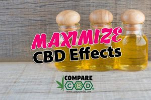 bioavailability, CBD. maximize effects
