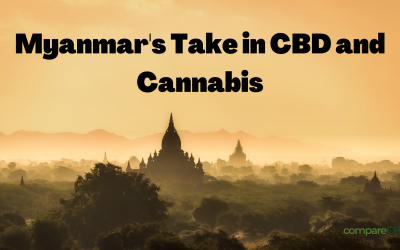 Myanmar's Take in CBD and Cannabis