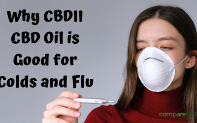 Why CBDII CBD Oil is Good for Colds and Flu